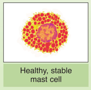 healthymastcells